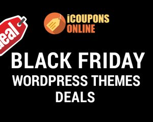 black friday wp themes deal